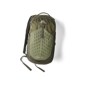 Gregory Nano 20 Rucksack fennel green